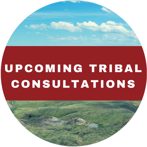 Tribal Consultations 2