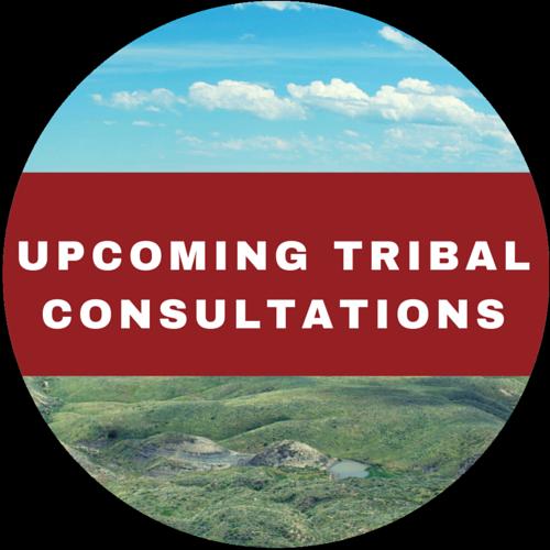 Tribal Consultations 2
