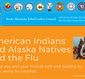 American Indians and Alaska Natives Flu